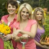Garden Angels Gardening The Home Channel