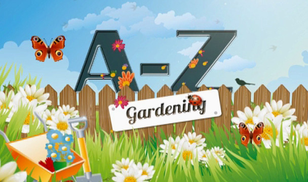 A Z Of Gardening Garden Video Clips The Home Channel