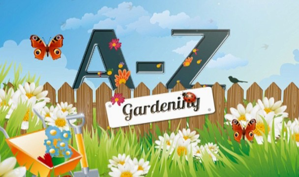 A z of gardening garden video clips the home channel Home channel gardening
