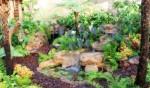 design-a-garden-episode-1