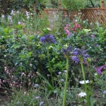 Design A Garden Gardening The Home Channel